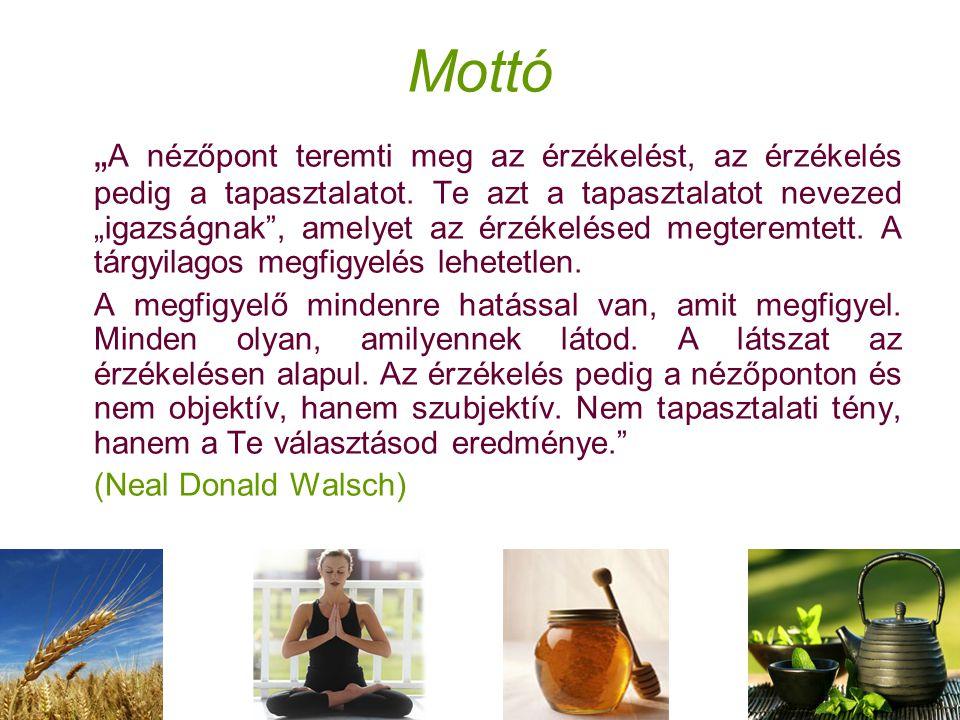"""Mottó """" A nézőpont teremti meg az érzékelést, az érzékelés pedig a tapasztalatot."""