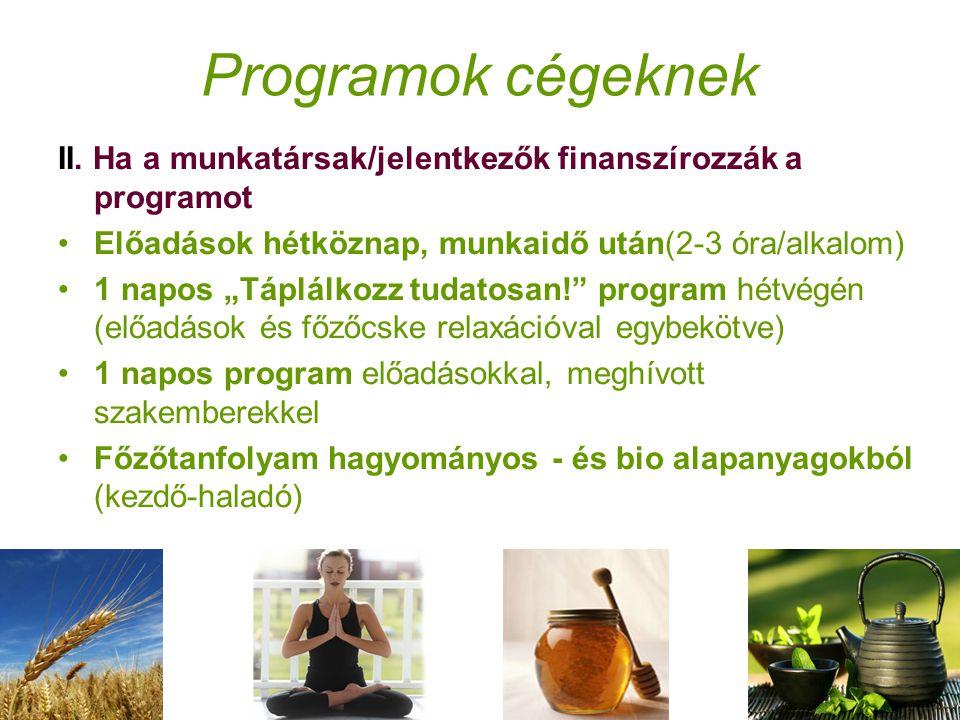 Programok cégeknek II.