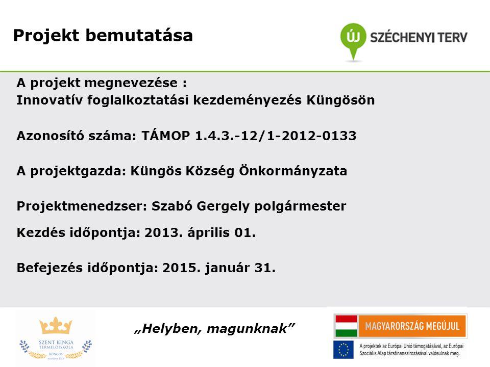 Projekt bemutatása A projekt megnevezése : Innovatív foglalkoztatási kezdeményezés Küngösön Azonosító száma: TÁMOP 1.4.3.-12/1-2012-0133 A projektgazd