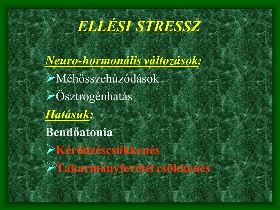 ELLÉSI STRESSZ Neuro-hormonális változások:  Méhösszehúzódások  Ösztrogénhatás Hatásuk: Bendőatonia  Kérődzéscsökkenés  Takarmányfevétel csökkenés