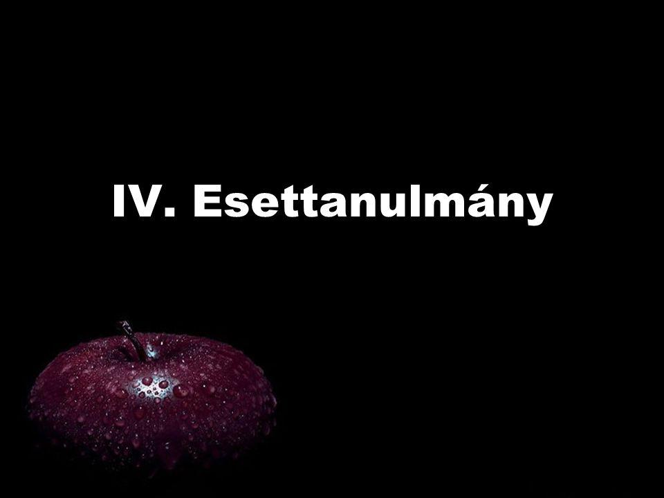 IV. Esettanulmány