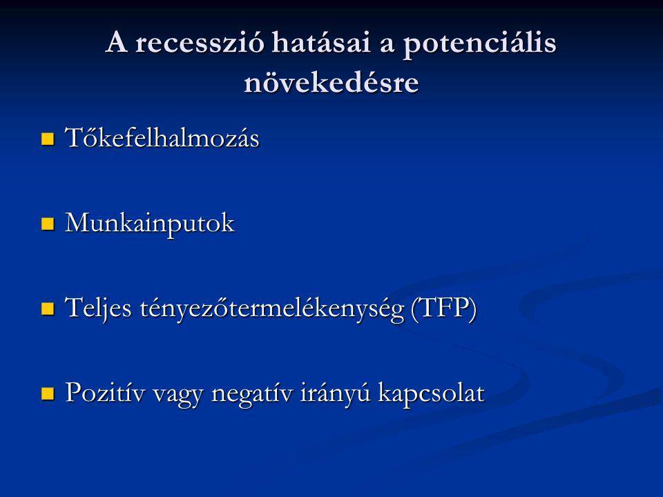 A recesszió hatásai a potenciális növekedésre  Tőkefelhalmozás  Munkainputok  Teljes tényezőtermelékenység (TFP)  Pozitív vagy negatív irányú kapcsolat