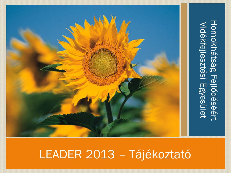 LEADER 2013 – Tájékoztató Homokhátság Fejlődéséért Vidékfejlesztési Egyesület