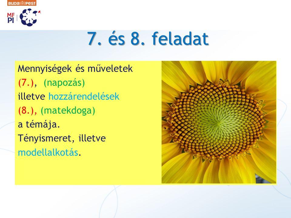 7. és 8. feladat Mennyiségek és műveletek (7.), (napozás) illetve hozzárendelések (8.), (matekdoga) a témája. Tényismeret, illetve modellalkotás.