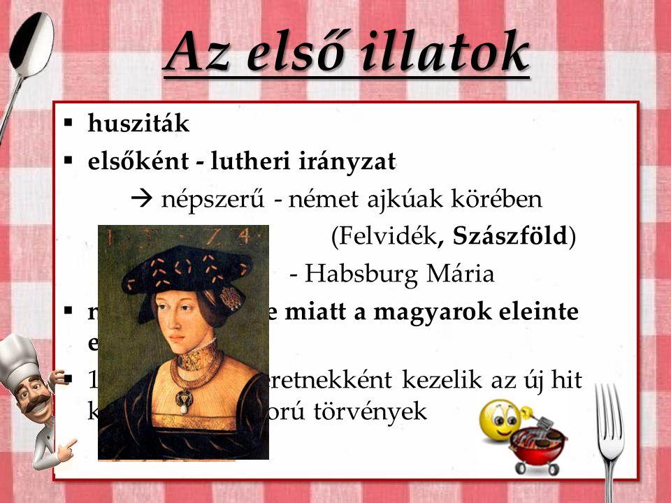 Hozzávalók… A reformáció térhódításának okai:  mohácsi vész 1526.