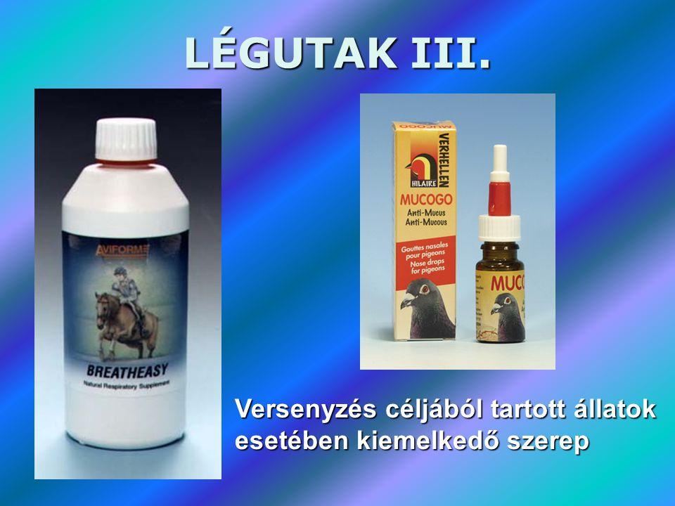 LÉGUTAK III. Versenyzés céljából tartott állatok esetében kiemelkedő szerep