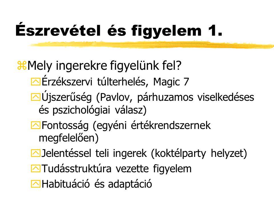 Nyelvi kódok elemzése 3.zTalmi (83): Milyen referencitárgyat választunk.