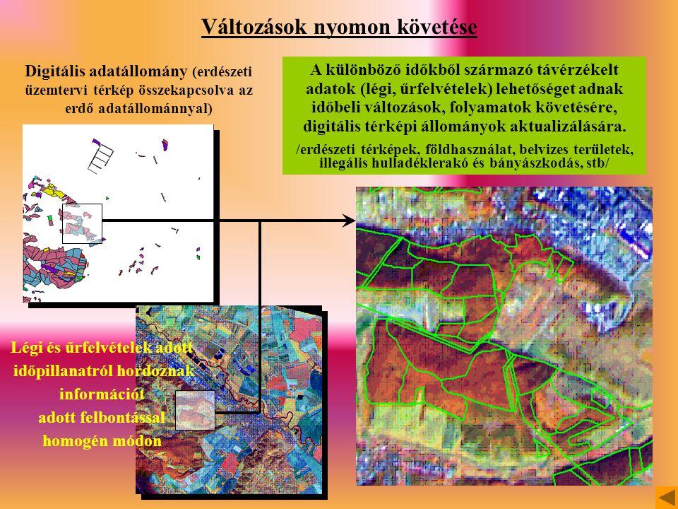 Változások nyomon követése Légi és űrfelvételek adott időpillanatról hordoznak információt adott felbontással homogén módon Digitális adatállomány (erdészeti üzemtervi térkép összekapcsolva az erdő adatállománnyal) A különböző időkből származó távérzékelt adatok (légi, űrfelvételek) lehetőséget adnak időbeli változások, folyamatok követésére, digitális térképi állományok aktualizálására.