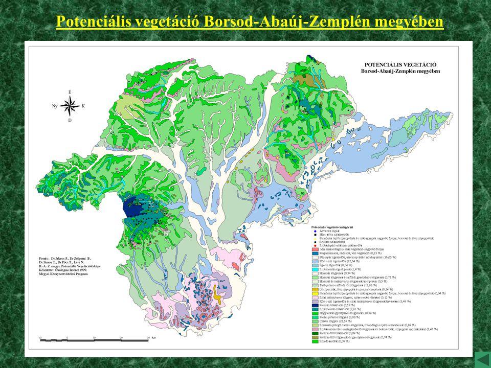 Potenciális vegetáció Borsod-Abaúj-Zemplén megyében