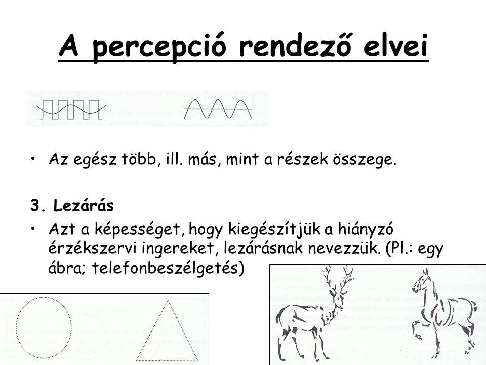 A percepció rendező elvei •Az egész több, ill. más, mint a részek összege. 3. Lezárás •Azt a képességet, hogy kiegészítjük a hiányzó érzékszervi inger