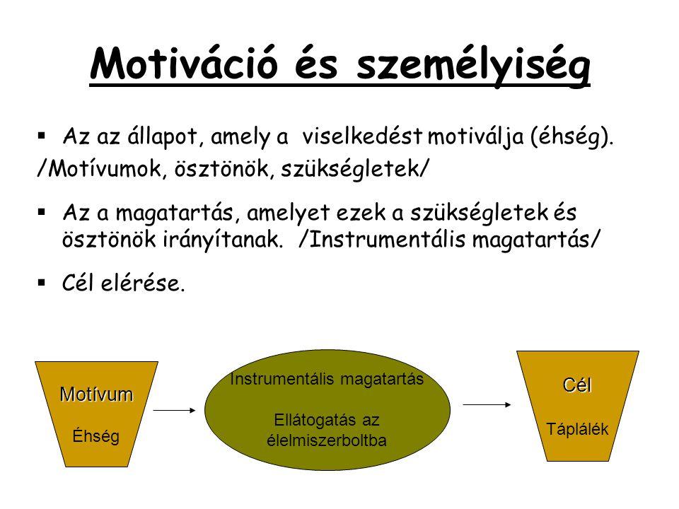 Motiváció és személyiség  Az az állapot, amely a viselkedést motiválja (éhség). /Motívumok, ösztönök, szükségletek/  Az a magatartás, amelyet ezek a