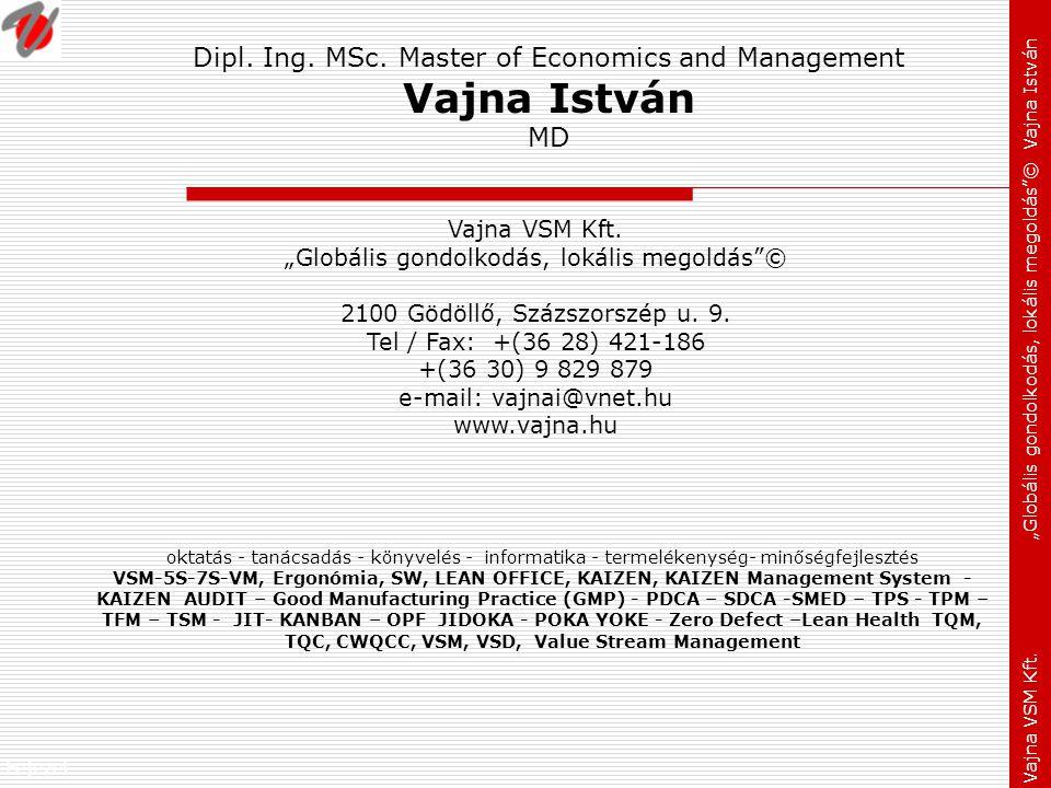 """Fejezet: Vajna VSM Kft. """"Globális gondolkodás, lokális megoldás""""© Vajna István Dipl. Ing. MSc. Master of Economics and Management Vajna István MD okta"""