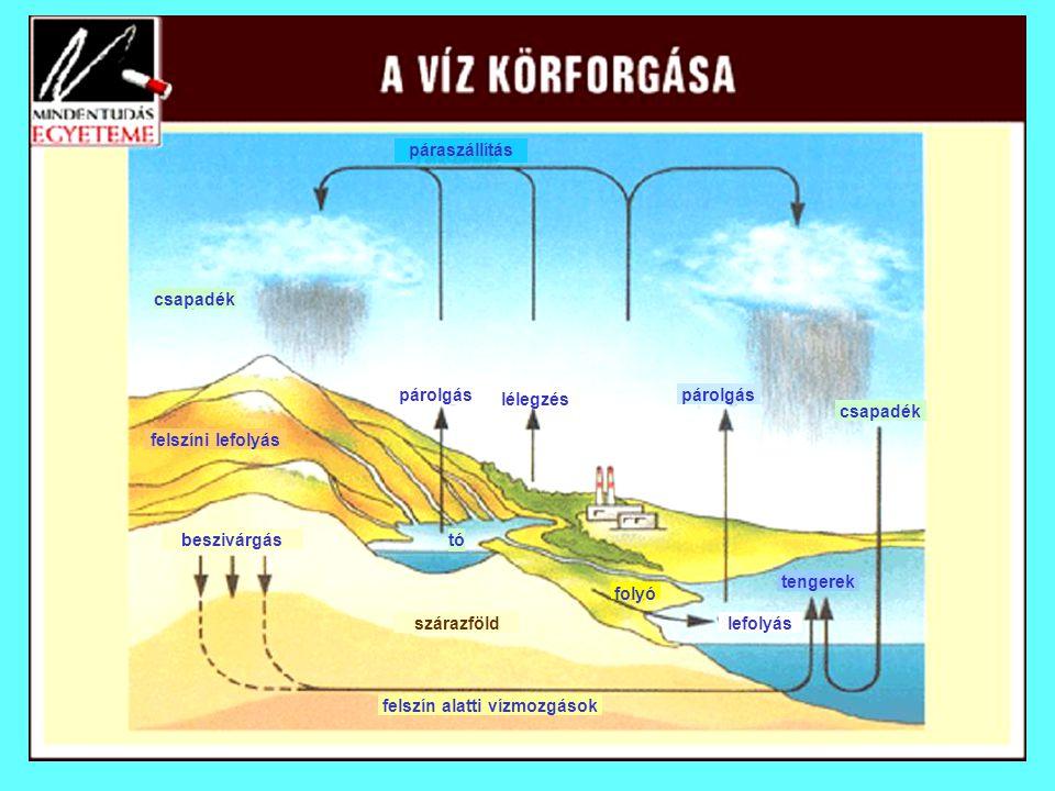 csapadék párolgás páraszállítás lélegzés tengerek felszíni lefolyás beszivárgástó felszín alatti vízmozgások szárazföld folyó lefolyás