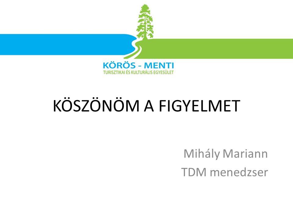 Mihály Mariann TDM menedzser KÖSZÖNÖM A FIGYELMET