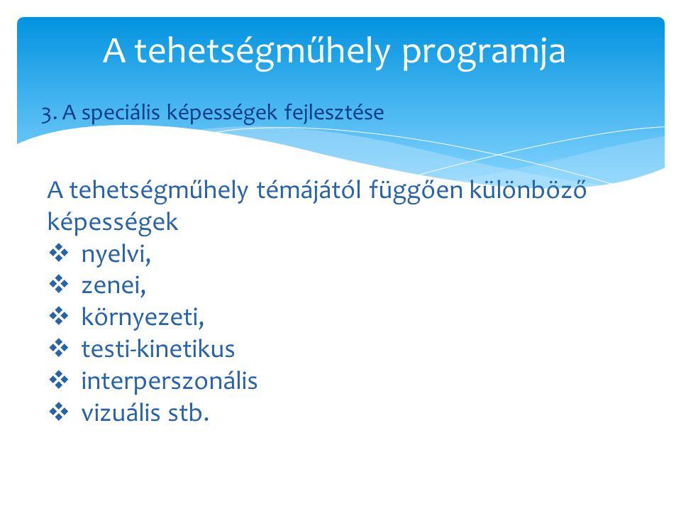 3. A speciális képességek fejlesztése A tehetségműhely programja A tehetségműhely témájától függően különböző képességek  nyelvi,  zenei,  környeze