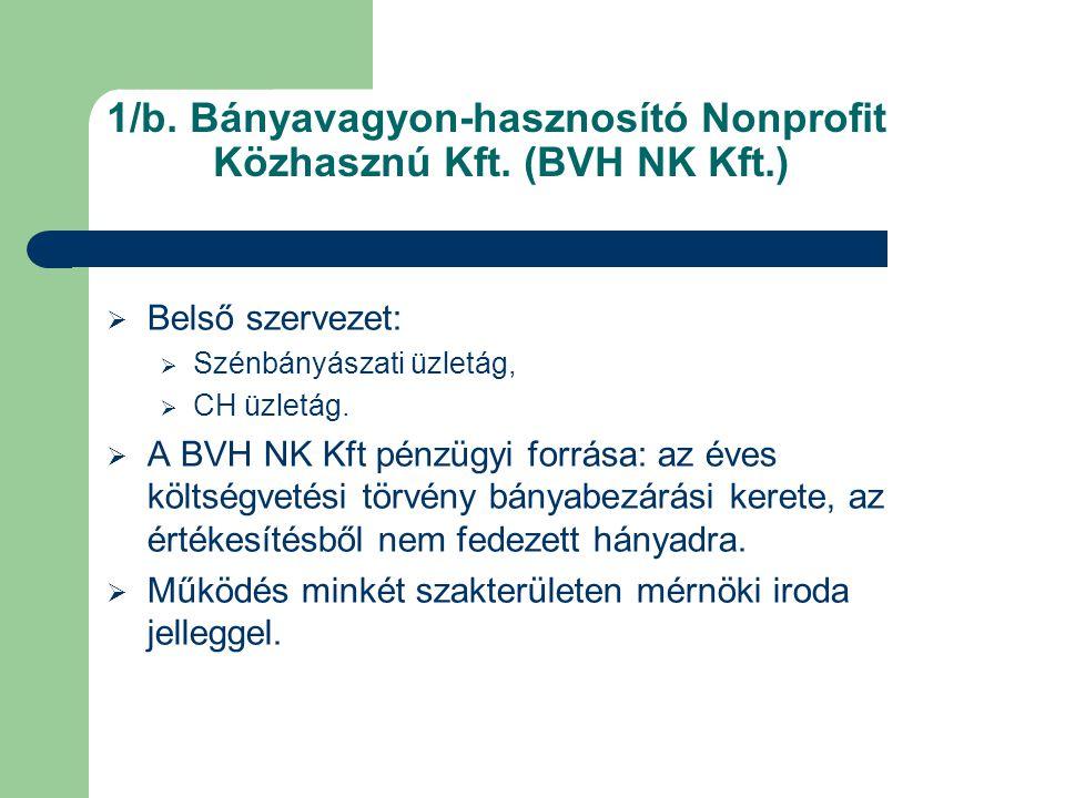 1/b. Bányavagyon-hasznosító Nonprofit Közhasznú Kft. (BVH NK Kft.)  Belső szervezet:  Szénbányászati üzletág,  CH üzletág.  A BVH NK Kft pénzügyi
