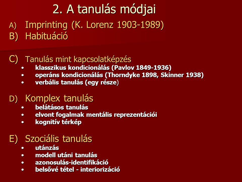 2. A tanulás módjai A) Imprinting (K. Lorenz 1903-1989) B)Habituáció C) Tanulás mint kapcsolatképzés •klasszikus kondicionálás (Pavlov 1849-1936) •ope