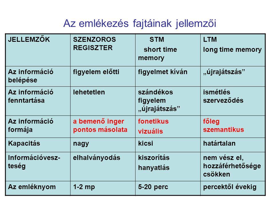 Az emlékezés fajtáinak jellemzői JELLEMZŐKSZENZOROS REGISZTER STM short time memory LTM long time memory Az információ belépése figyelem előttifigyelm