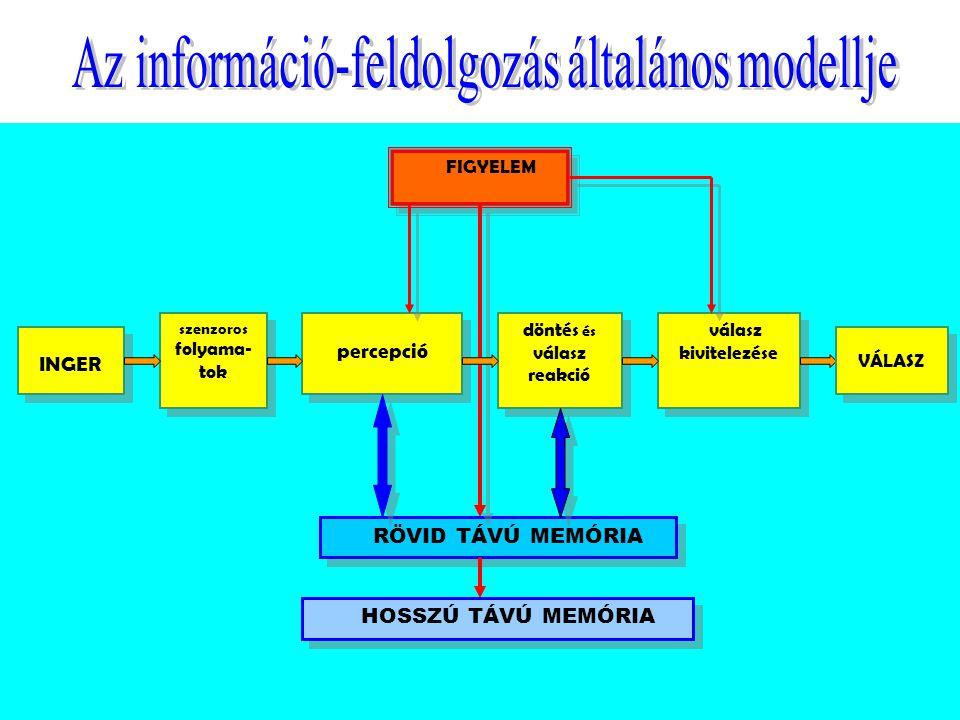 A figyelem  Funkciói  Energetizál  Szelektál (koktélparti)  Fajtái  Spontán  Szándékos  Terjedelme (7+/-2) a rövid memóriáé is.