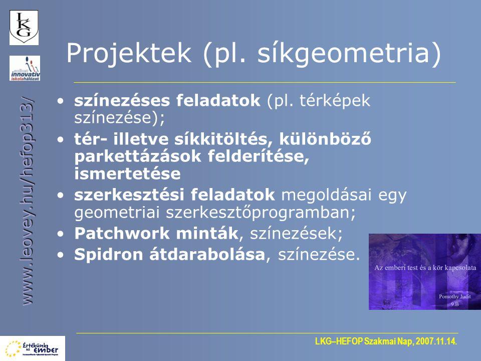 LKG–HEFOP Szakmai Nap, 2007.11.14. www.leovey.hu/hefop313 / Projektek (pl. síkgeometria) •színezéses feladatok (pl. térképek színezése); •tér- illetve