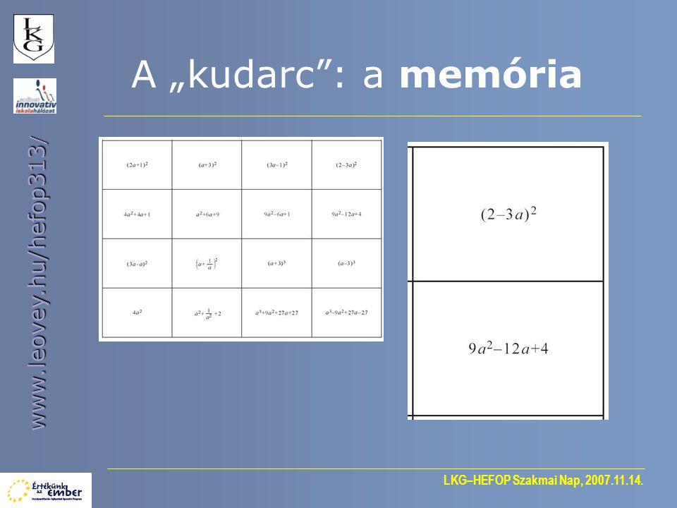 "LKG–HEFOP Szakmai Nap, 2007.11.14. www.leovey.hu/hefop313 / A ""kudarc"": a memória"