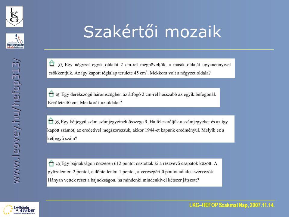 LKG–HEFOP Szakmai Nap, 2007.11.14. www.leovey.hu/hefop313 / Tapasztalatok gyűjtése