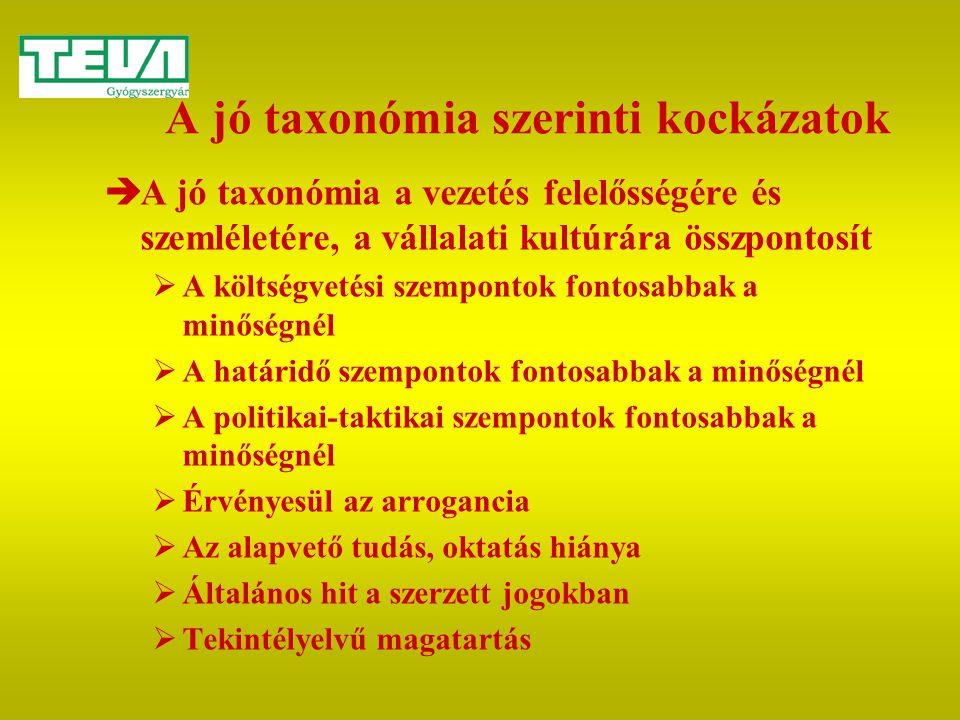 A jó taxonómia szerinti kockázatok  A jó taxonómia a vezetés felelősségére és szemléletére, a vállalati kultúrára összpontosít  A költségvetési szem