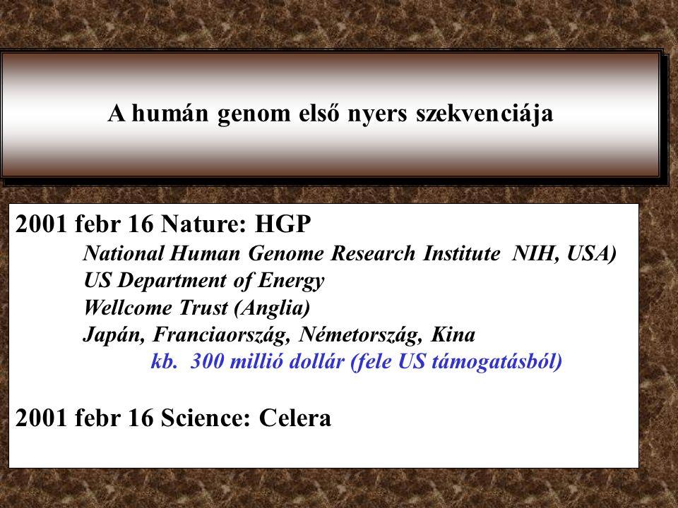 HGP (Human Genome Project) Francis Collins 20 központ, állami támogatás NCBI:National Center of Biotechnology Information CeleraGenomics (privát szekt