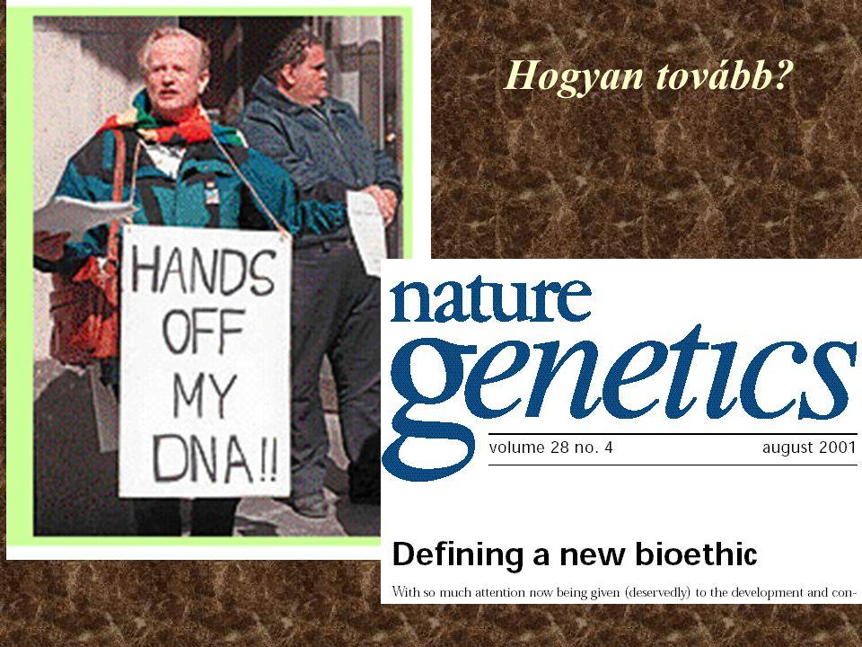 Gyógyszeripar Új gyógyszer-támadáspontok felfedezése 'in silicio' Pl.: Szerotonin receptor ismert gén: 5-HT 3A új gén (homológ szekvencia): 5-HT 3B A