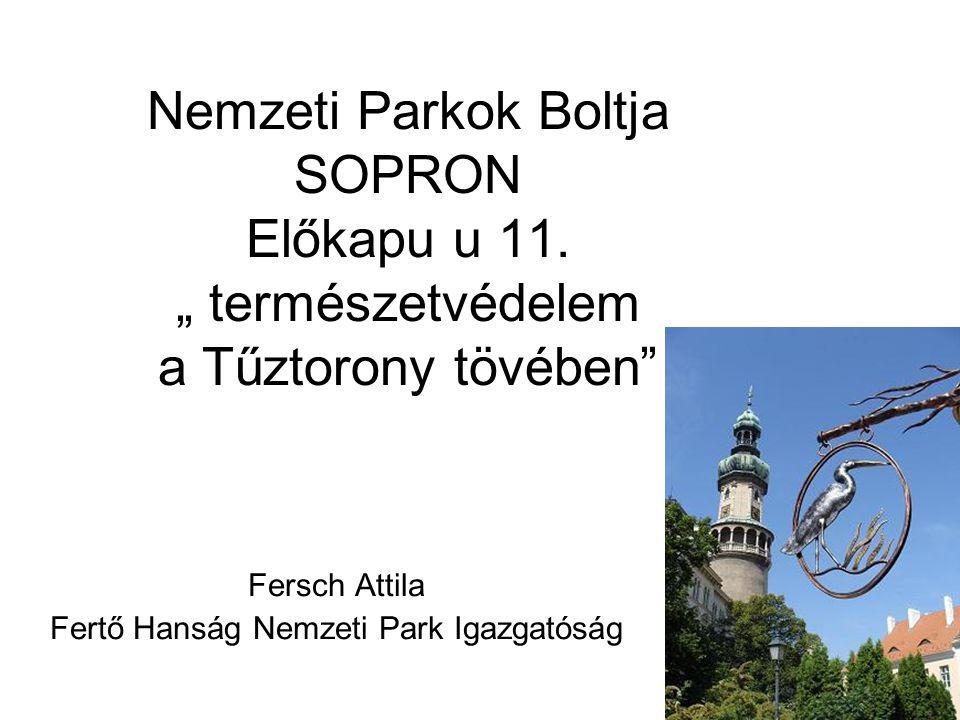 """Nemzeti Parkok Boltja SOPRON Előkapu u 11. """" természetvédelem a Tűztorony tövében"""" Fersch Attila Fertő Hanság Nemzeti Park Igazgatóság"""
