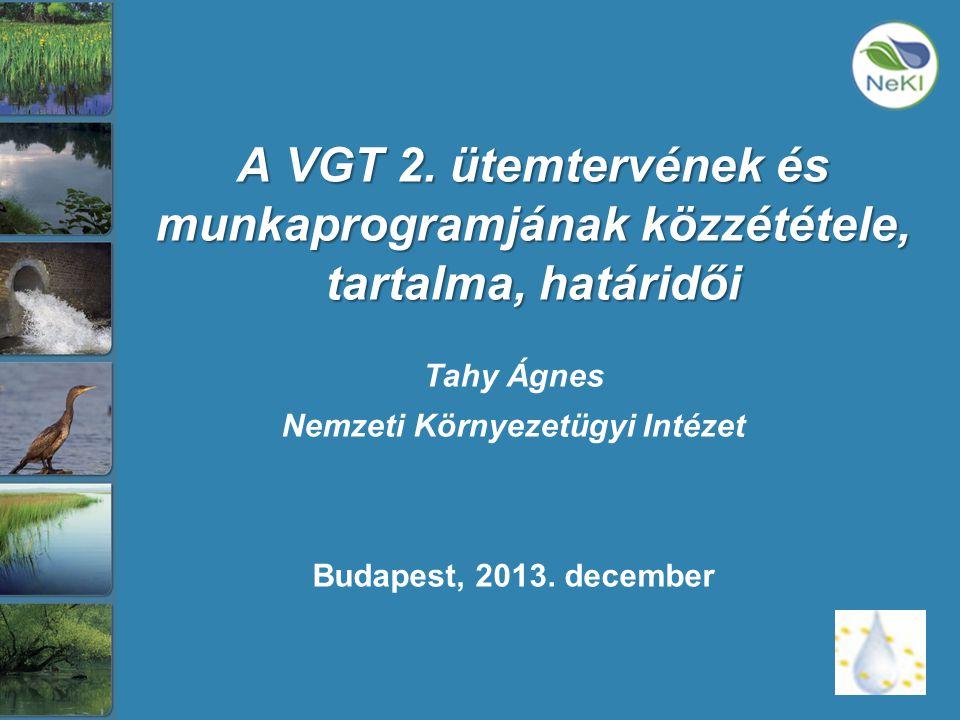 VKI leányirányelvek •2005/646/EK határozat és 2008/915/EK határozat az interkalibrációs hálózatot alkotó helyek nyilvántartásának létrehozásáról és az interkalibrációs osztályozási értékek megállapításáról •2006/11/EK irányelv a vízi környezetébe bocsátott egyes veszélyes anyagok által okozott szennyezésről (VKI 16.