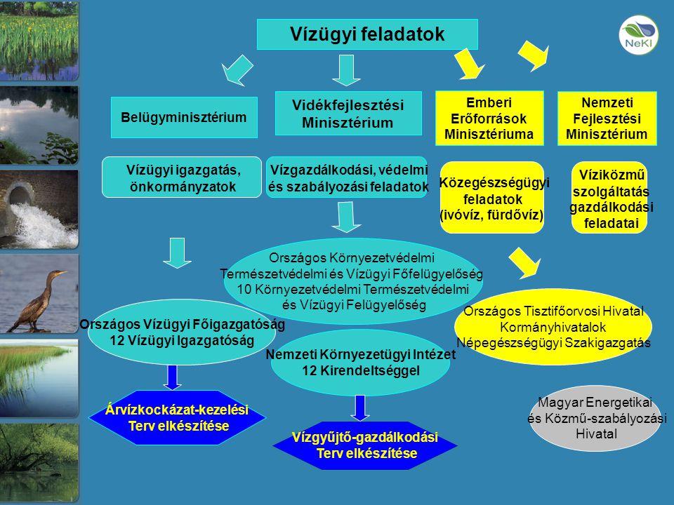 Vízügyi feladatok Vidékfejlesztési Minisztérium Nemzeti Fejlesztési Minisztérium Belügyminisztérium Vízgazdálkodási, védelmi és szabályozási feladatok Vízügyi igazgatás, önkormányzatok Víziközmű szolgáltatás gazdálkodási feladatai Országos Vízügyi Főigazgatóság 12 Vízügyi Igazgatóság Nemzeti Környezetügyi Intézet 12 Kirendeltséggel Magyar Energetikai és Közmű-szabályozási Hivatal Országos Környezetvédelmi Természetvédelmi és Vízügyi Főfelügyelőség 10 Környezetvédelmi Természetvédelmi és Vízügyi Felügyelőség Vízgyűjtő-gazdálkodási Terv elkészítése Árvízkockázat-kezelési Terv elkészítése Emberi Erőforrások Minisztériuma Közegészségügyi feladatok (ivóvíz, fürdővíz) Országos Tisztifőorvosi Hivatal Kormányhivatalok Népegészségügyi Szakigazgatás