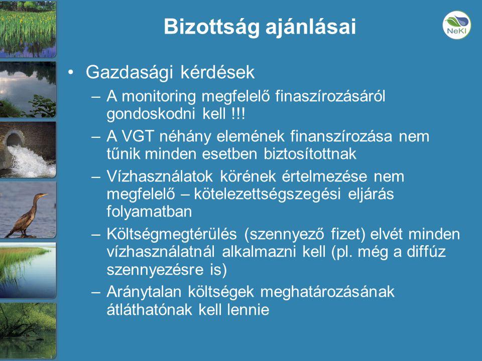Bizottság ajánlásai •Gazdasági kérdések –A monitoring megfelelő finaszírozásáról gondoskodni kell !!.