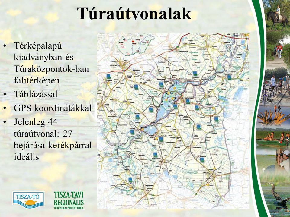 Attrakciók •Tematikus útvonalak: pl.