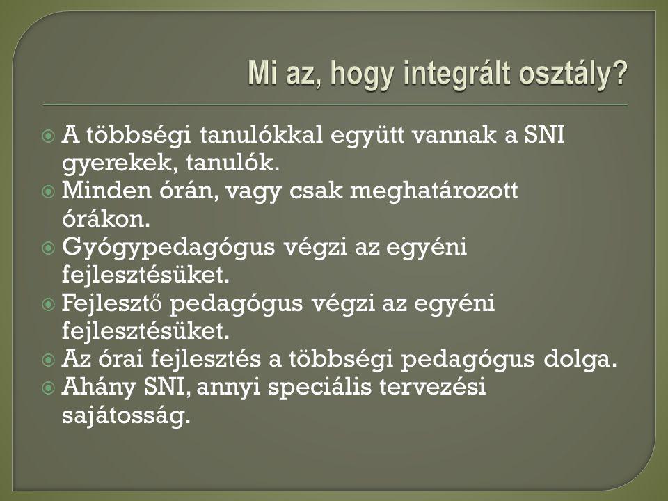 A többségi tanulókkal együtt vannak a SNI gyerekek, tanulók.