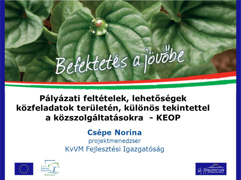 Csépe Norina projektmenedzser KvVM Fejlesztési Igazgatóság Pályázati feltételek, lehetőségek közfeladatok területén, különös tekintettel a közszolgált
