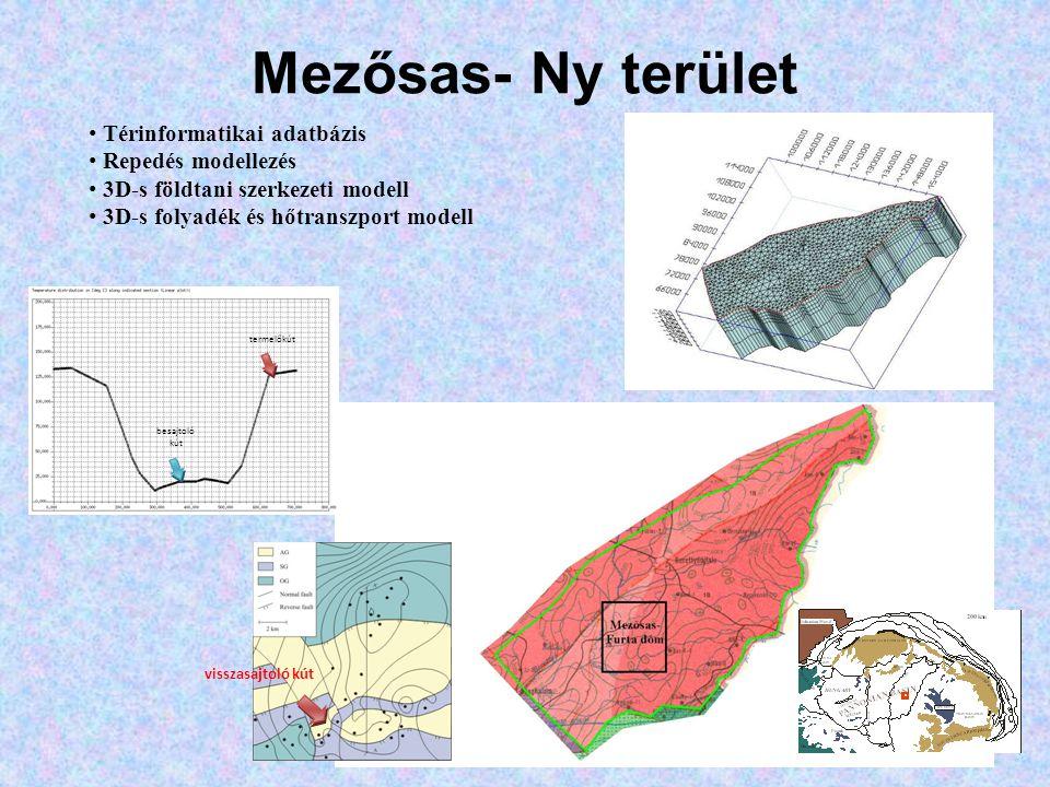 Mezősas- Ny terület • Térinformatikai adatbázis • Repedés modellezés • 3D-s földtani szerkezeti modell • 3D-s folyadék és hőtranszport modell visszasajtoló kút termelőkút besajtoló kút