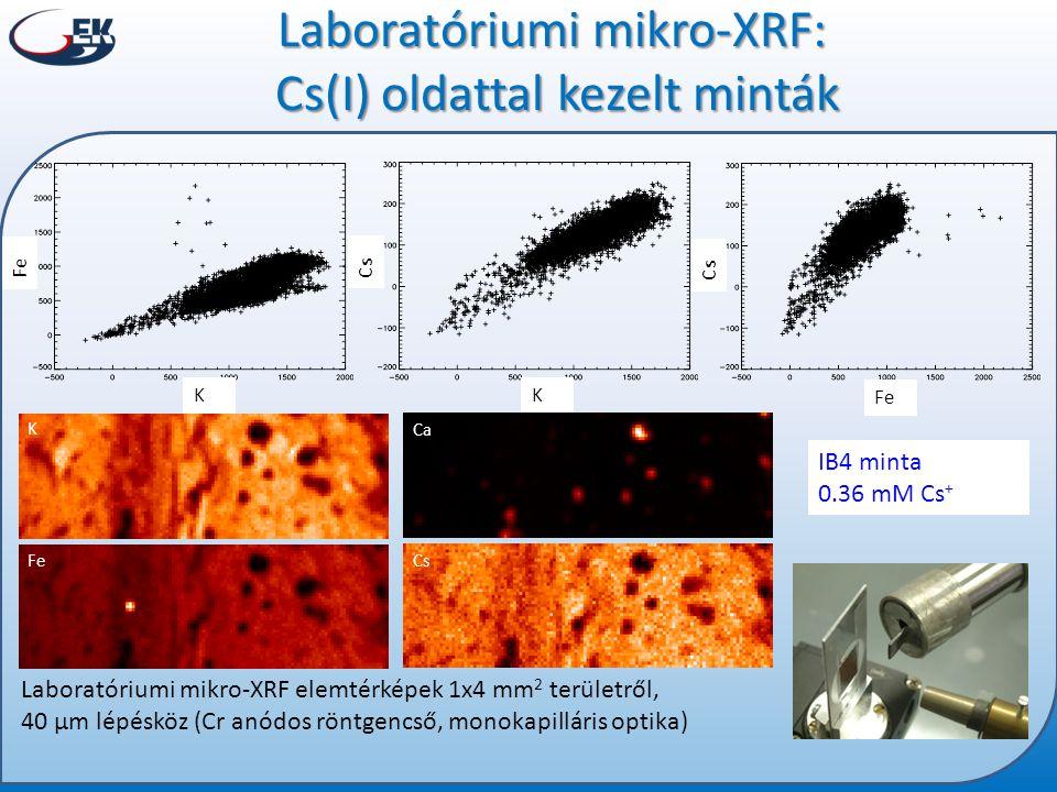Laboratóriumi mikro-XRF: Cs(I) oldattal kezelt minták IB4 minta 0.36 mM Cs + K Ca Fe Cs Laboratóriumi mikro-XRF elemtérképek 1x4 mm 2 területről, 40 µ