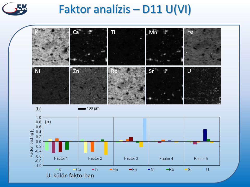Rb Mn Fe NiSrZnU K CaTi 100 µm (b) Faktor analízis – D11 U(VI) U: külön faktorban
