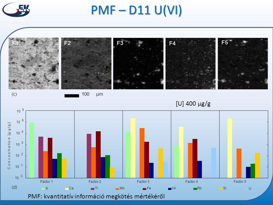 PMF – D11 U(VI) [U] 400 µg/g PMF: kvantitatív információ megkötés mértékéről