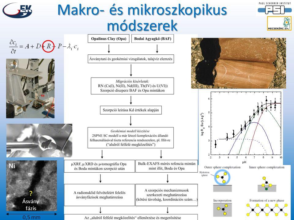 BAF (D-11) OPA (Mont Terri) Ni(II) l og Cs sorbed (mol kg -1 ) Mért és modellezett szorpciós izotermák