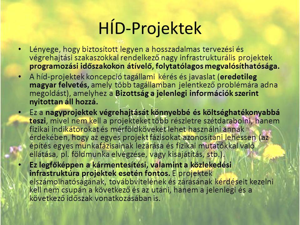 HÍD-Projektek • Lényege, hogy biztosított legyen a hosszadalmas tervezési és végrehajtási szakaszokkal rendelkező nagy infrastrukturális projektek pro