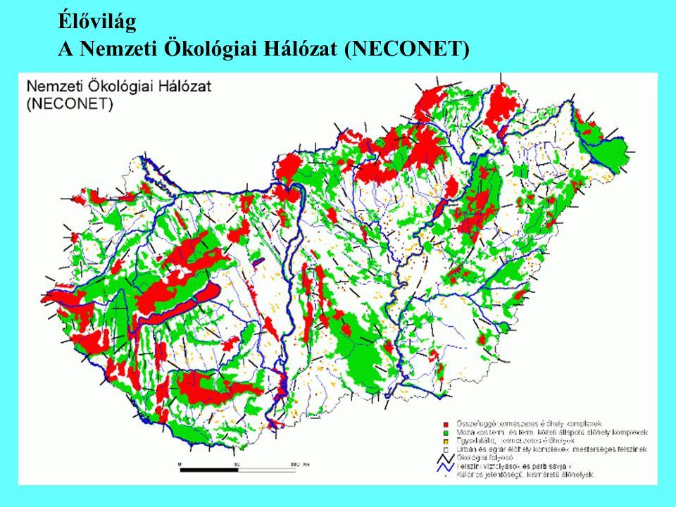 Élővilág A Nemzeti Ökológiai Hálózat (NECONET)