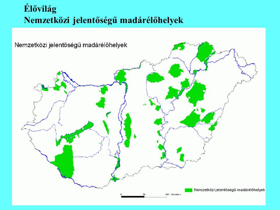 Élővilág Nemzetközi jelentőségű madárélőhelyek