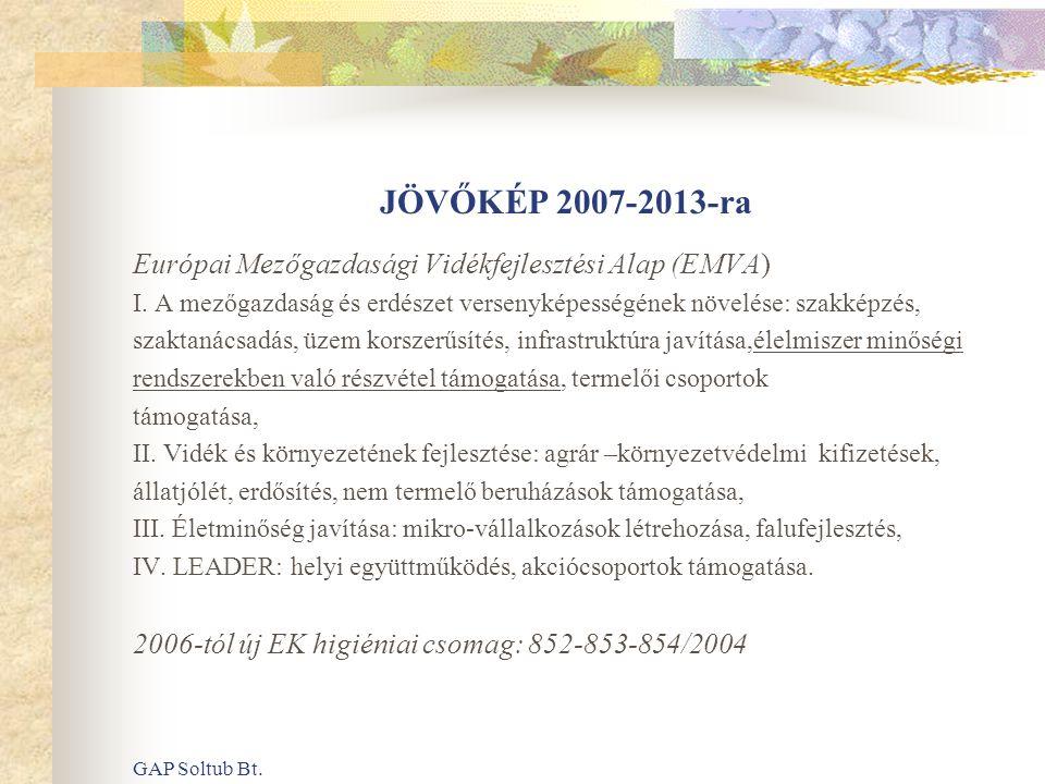 GAP Soltub Bt. JÖVŐKÉP 2007-2013-ra Európai Mezőgazdasági Vidékfejlesztési Alap (EMVA) I. A mezőgazdaság és erdészet versenyképességének növelése: sza