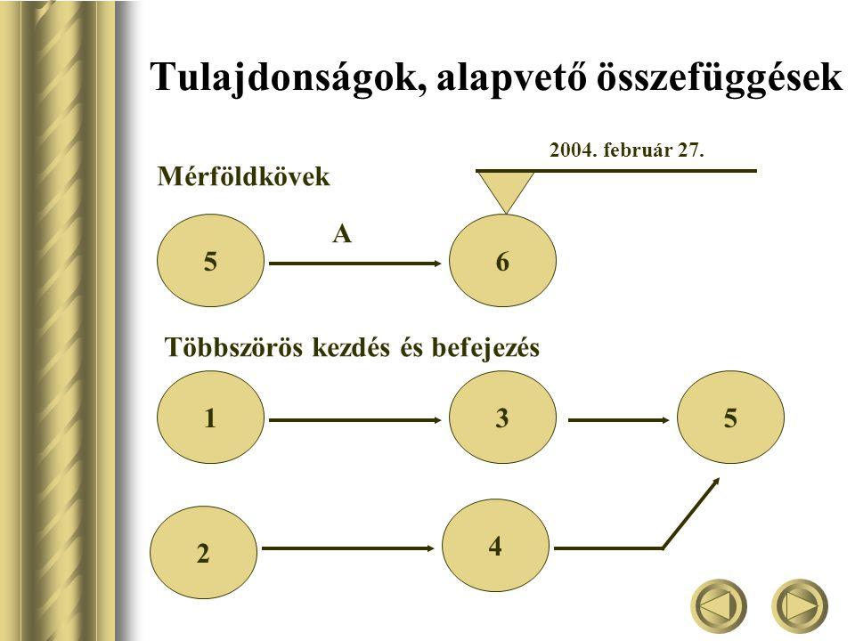 Tulajdonságok, alapvető összefüggések Mérföldkövek 56 A 2004.