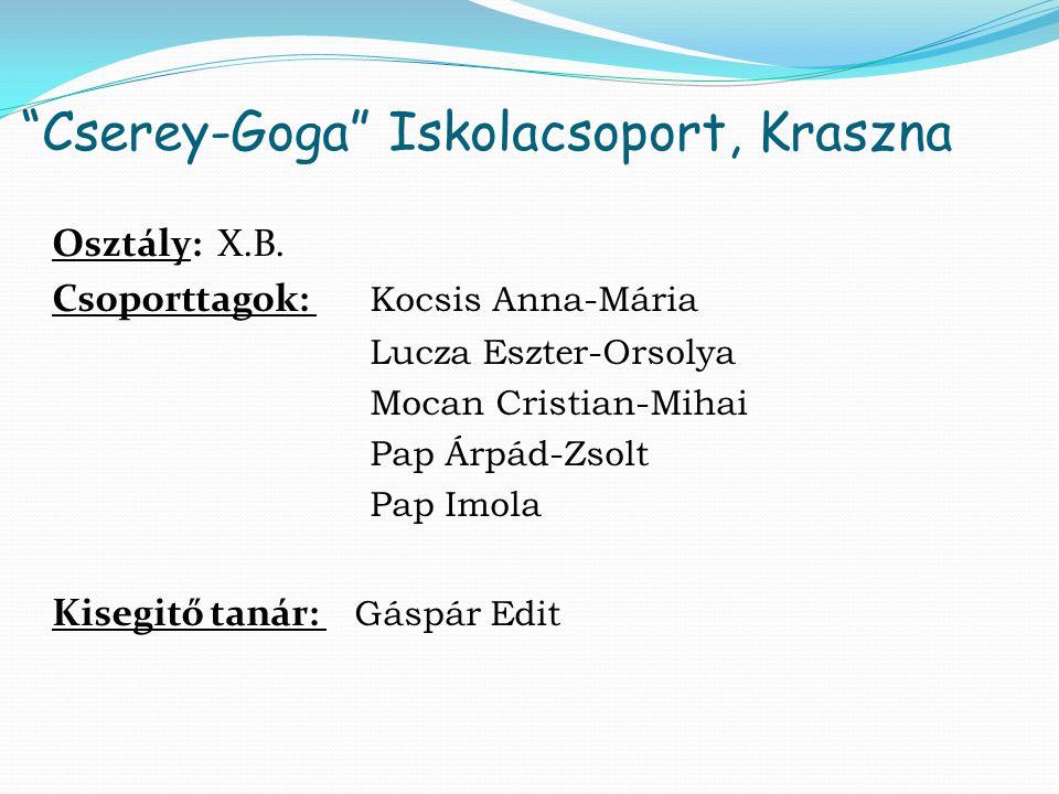 Cserey-Goga Iskolacsoport, Kraszna Osztály: X.B.