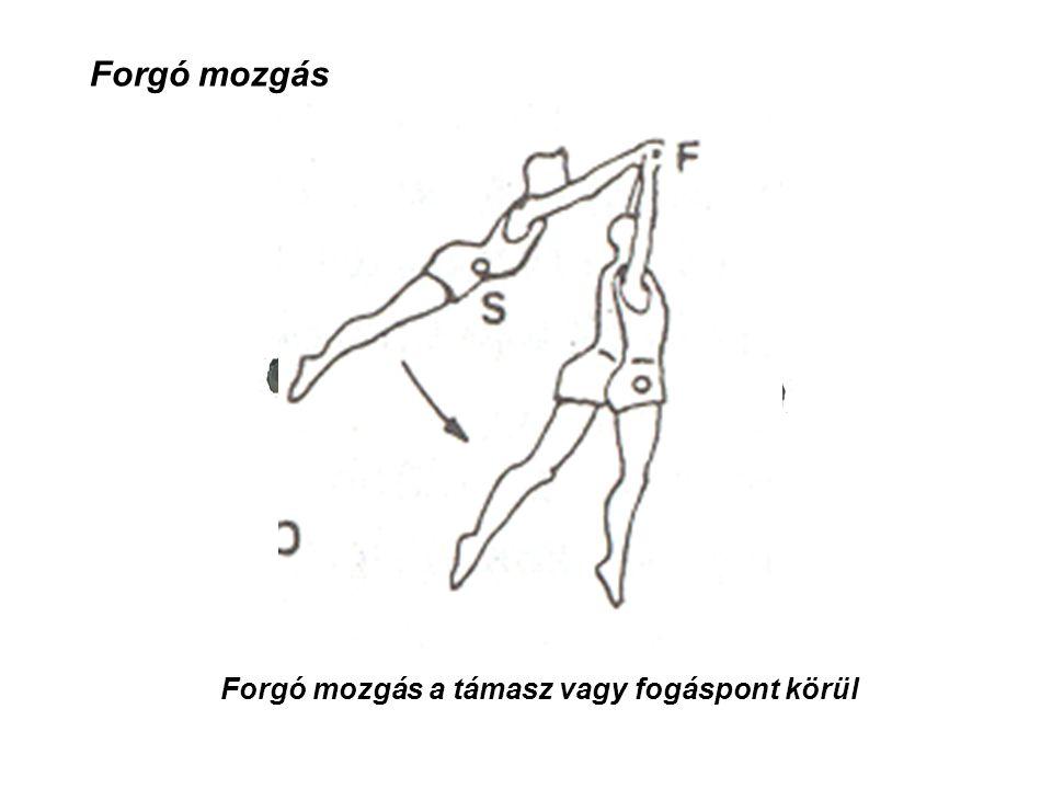 Forgó mozgás Forgó mozgás a támasz vagy fogáspont körül
