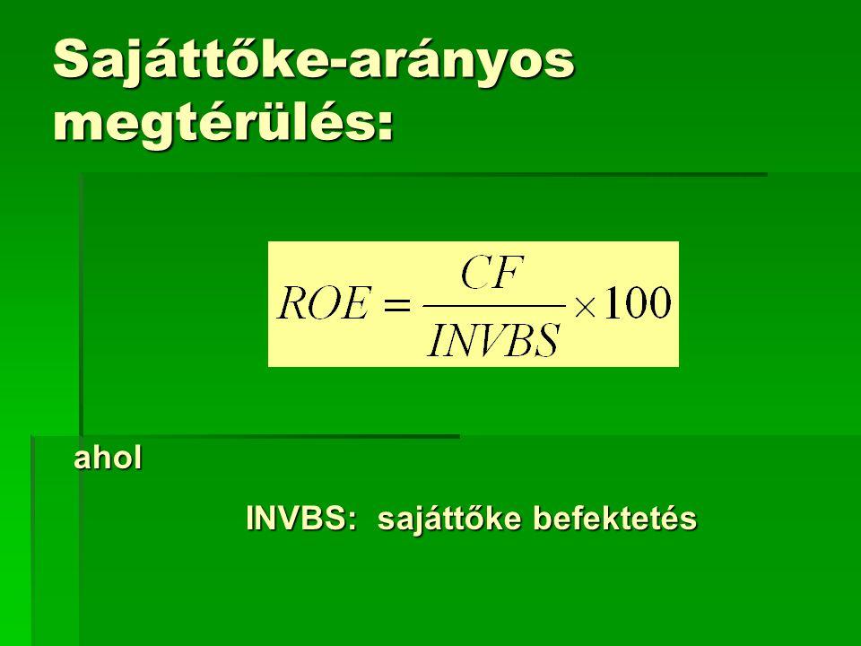 Sajáttőke-arányos megtérülés: ahol INVBS: sajáttőke befektetés