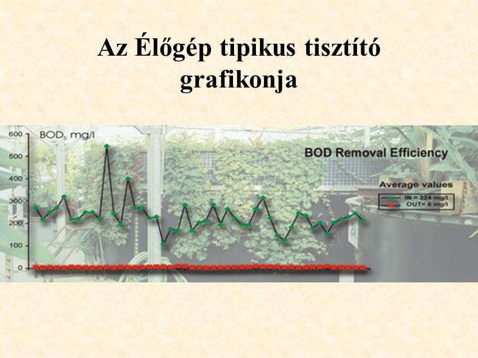 Az Élőgép tipikus tisztító grafikonja